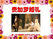 《费加罗的婚礼》PPT课件