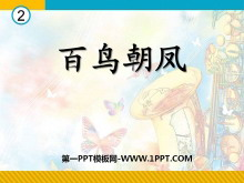 《百鸟朝凤》PPT课件5