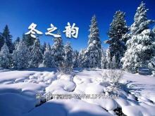 《冬之韵》PPT课件