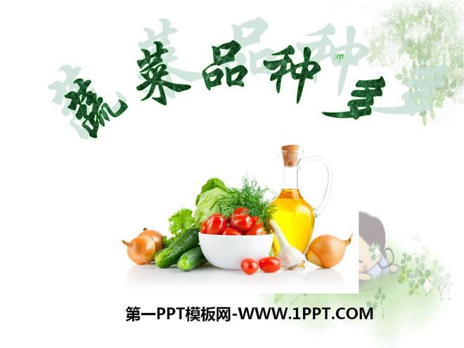 《蔬菜品种多》PPT课件