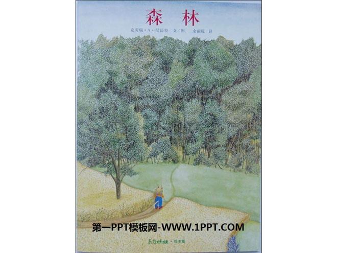 《森林》绘本故事ppt图片