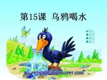 《乌鸦喝水》PPT课件13