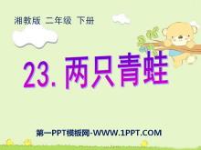 《两只青蛙》PPT课件2