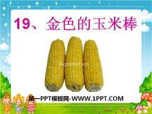 《金色的玉米棒》PPT�n件2