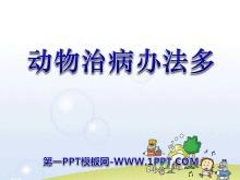 《动物治病办法多》PPT课件2