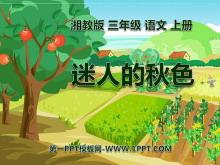 《迷人的秋色》PPT课件3