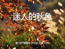 《迷人的秋色》PPT课件4