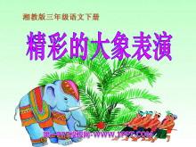 《精彩的大象表演》PPT课件