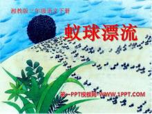 《蚁球漂流》PPT课件