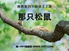 《那只松鼠》PPT�n件4
