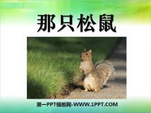 《那只松鼠》PPT�n件5