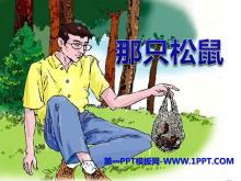 《那只松鼠》PPT�n件3