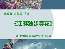 《江畔独步寻花》PPT课件5