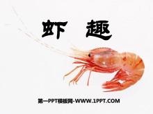 《虾趣》PPT课件