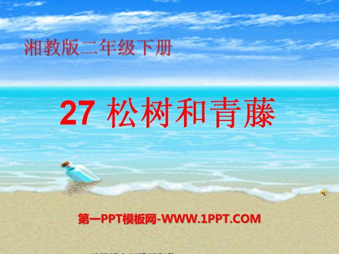 ppt课件 语文课件 湘教版二年级语文下册 《松树和青藤》ppt课件