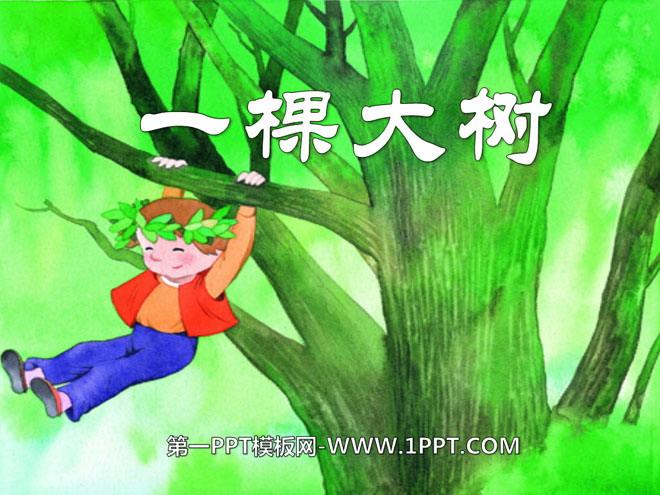 有时候,他爬上树去,抓住树枝荡秋千,或者吃树上结的果子,要是他累了