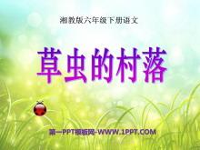 《草虫的村落》PPT课件下载10