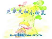 《达尔文和小松鼠》PPT课件