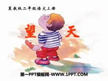 《望天》PPT课件