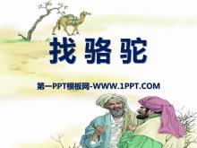 《找骆驼》PPT课件4