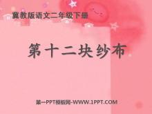 《第十二块纱布》PPT课件2