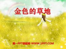 《金色的草地》PPT课件9