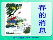 《春的消息》PPT课件11