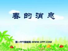 《春的消息》PPT课件9
