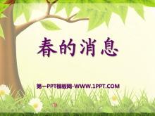 《春的消息》PPT课件10