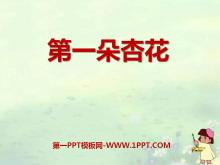 《第一朵杏花》PPT课件6
