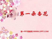 《第一朵杏花》PPT课件7