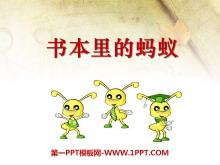 《书本里的蚂蚁》PPT课件2