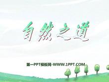 《自然之道》PPT课件8