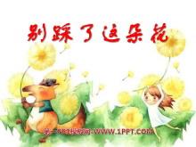 《别踩了这朵花》PPT课件4