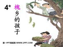 《槐乡的孩子》PPT课件