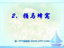 《捅马蜂窝》PPT课件4