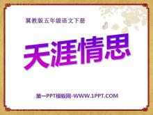 《天涯情思》PPT课件2