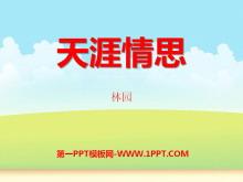 《天涯情思》PPT课件3