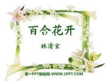《百合花开》PPT课件3