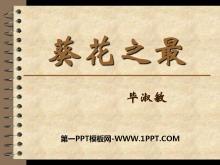 《葵花之最》PPT课件2