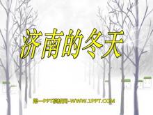 《济南的冬天》PPT课件13