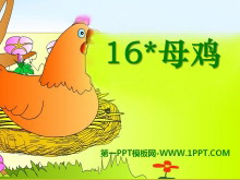 《母鸡》PPT课件9