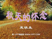 《秋天的怀念》PPT课件5