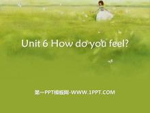 《How do you feel?》PPT课件18