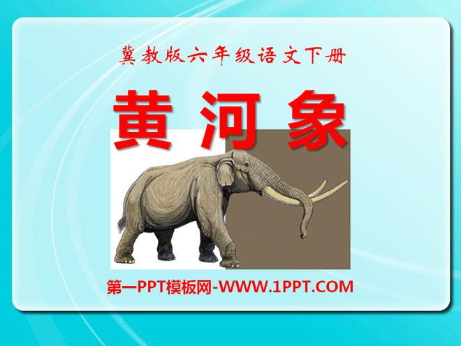 《黄河象》ppt课件3