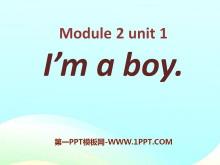 《I'm a boy》PPT课件3