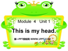 《This is my head》PPT课件3
