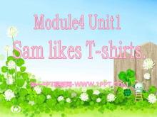 《Sam like T-shirts》PPT课件4