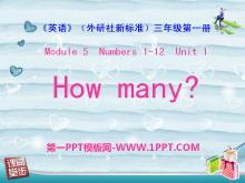 《How many?》PPT课件4