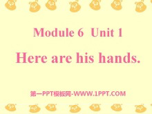 《Here are his hands》PPT课件